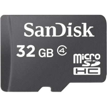 Picture of SanDisk 32 GB microSDHC