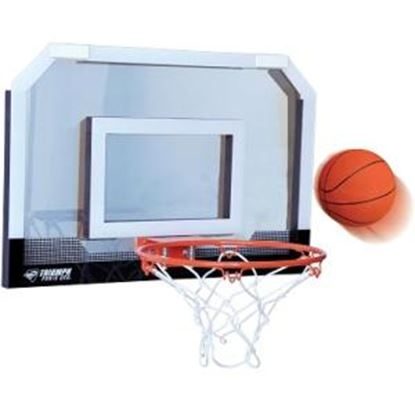 Picture of Triumph Door Court Basketball