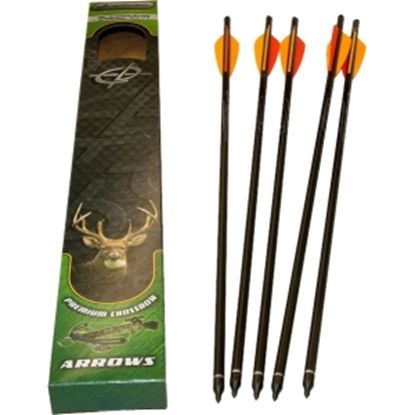 "Picture of Barnett 20"" Headhunter Arrows by Barnett - w/ Field Pt/Moon Nock"