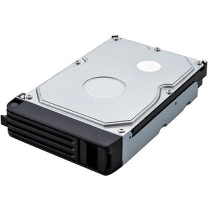 Picture of BUFFALO 1 TB Spare Replacement Hard Drive for TeraStation 3000 & 5000 Series (OP-HD1.0S-3Y)