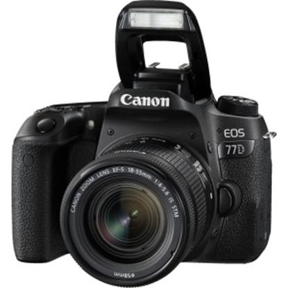Picture of Canon EOS 77D 24.2 Megapixel Digital SLR Camera with Lens - 18 mm - 55 mm