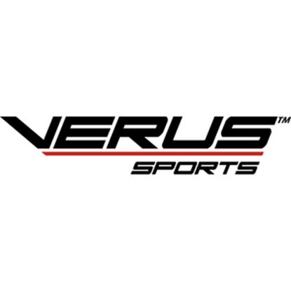Picture of Verus Sports Disc Golf Game