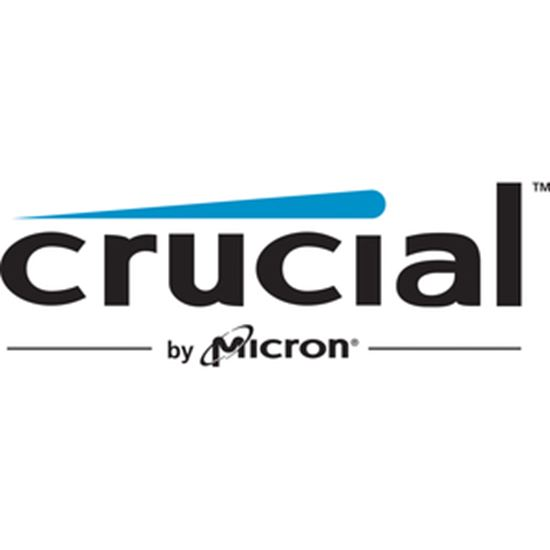 Picture of Crucial X6 500 GB Portable Solid State Drive - Internal