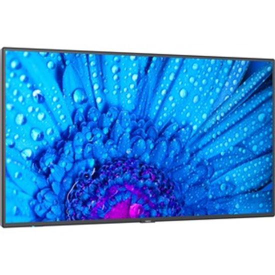 """Picture of NEC Display 49"""" Ultra High Definition Professional Display"""