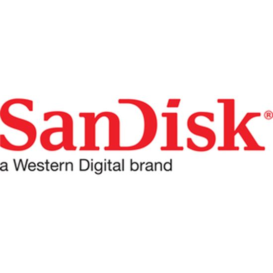 Picture of SanDisk Extreme PRO 256 GB Class 10/UHS-II (U3) V90 SDXC
